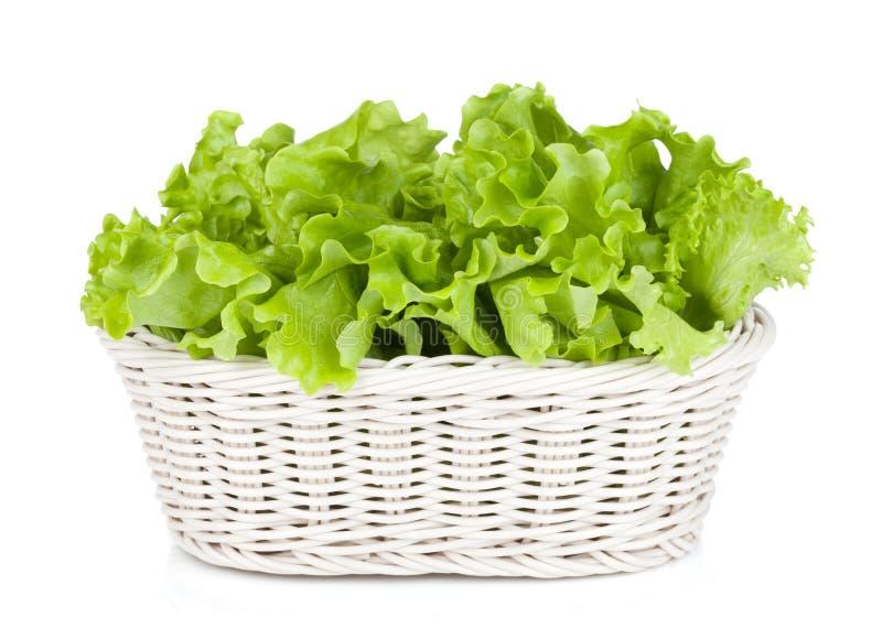 Kopfsalat im Korb stockfoto