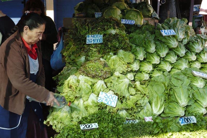 Kopfsalatmarkt stockfoto