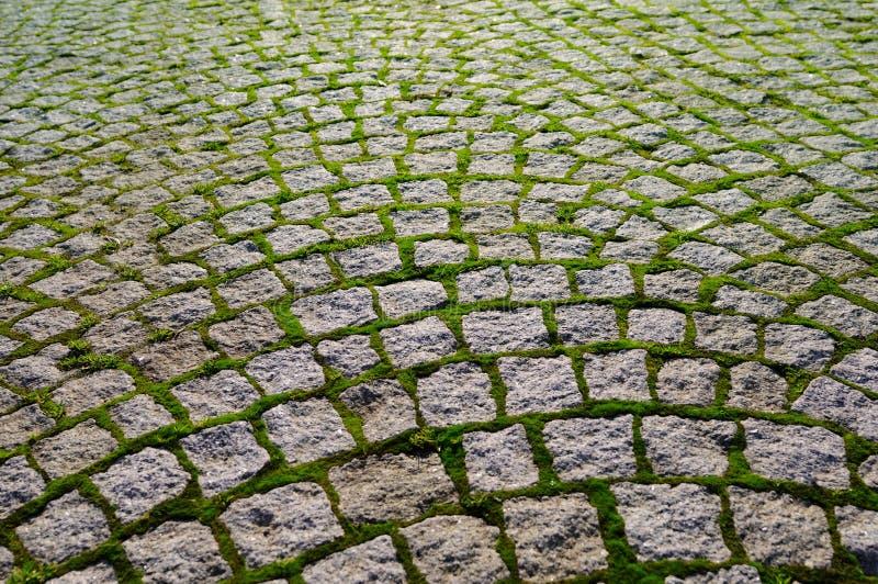Kopfstein mit den Grasziegelsteinen, die Perspektive zeigen. stockbilder