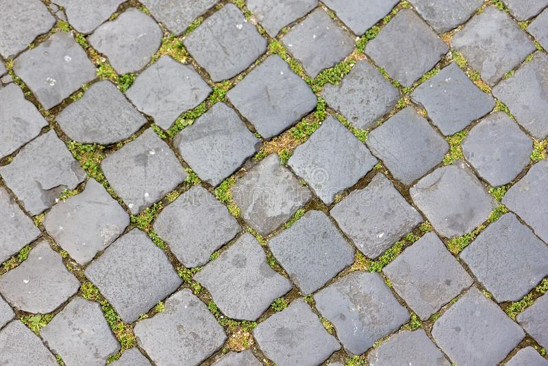 Kopfstein in Rom-Straße, Italien stockbild