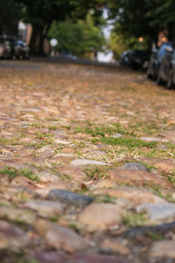 Kopfsteinstraße mit unscharfem Hintergrundalexandria VA lizenzfreie stockfotografie