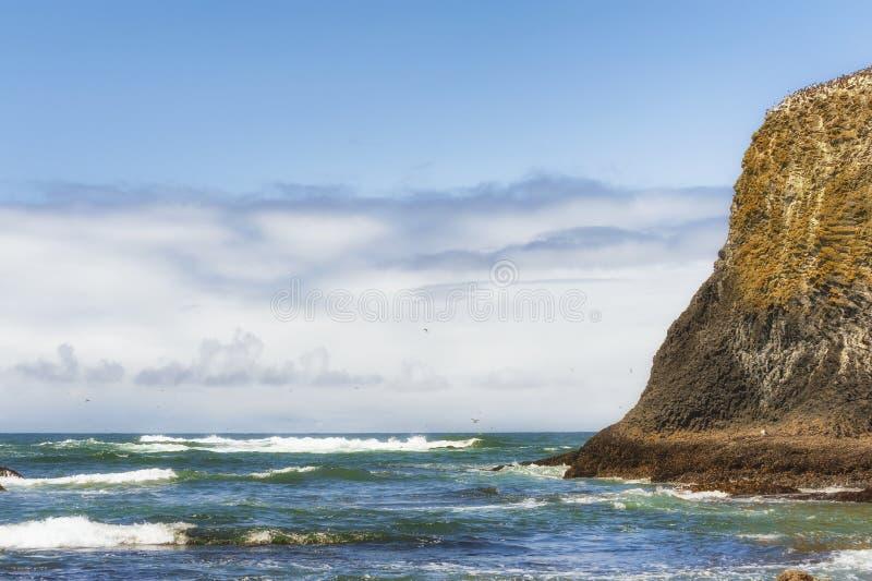 Kopien--sapcekopfstein-Strand Newport, Oregon stockbilder