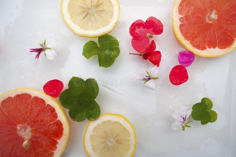 Kopiera utrymme Blommor och frukt med is arkivbilder