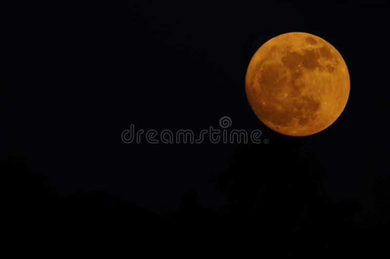 Kopierar mörka himlar för orange måne utrymmedetaljzoomen fotografering för bildbyråer
