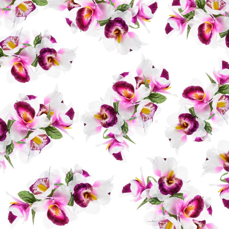 Ziemlich Färbung Von Blumen Mit Lebensmittelfarbe Fotos - Ideen ...
