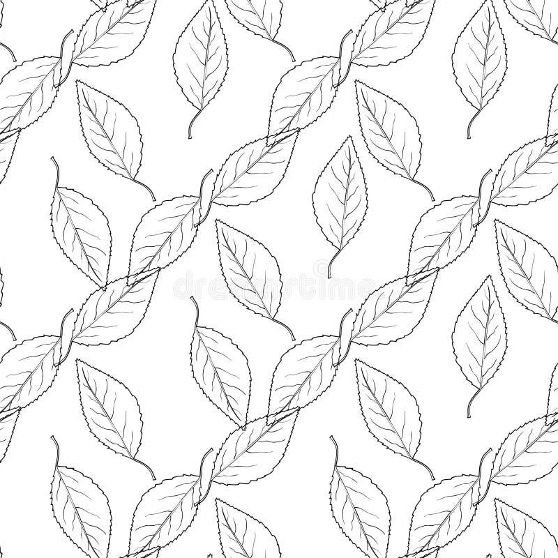 Kopieren Sie das nahtlose Monochrom mit Blättern vektor abbildung