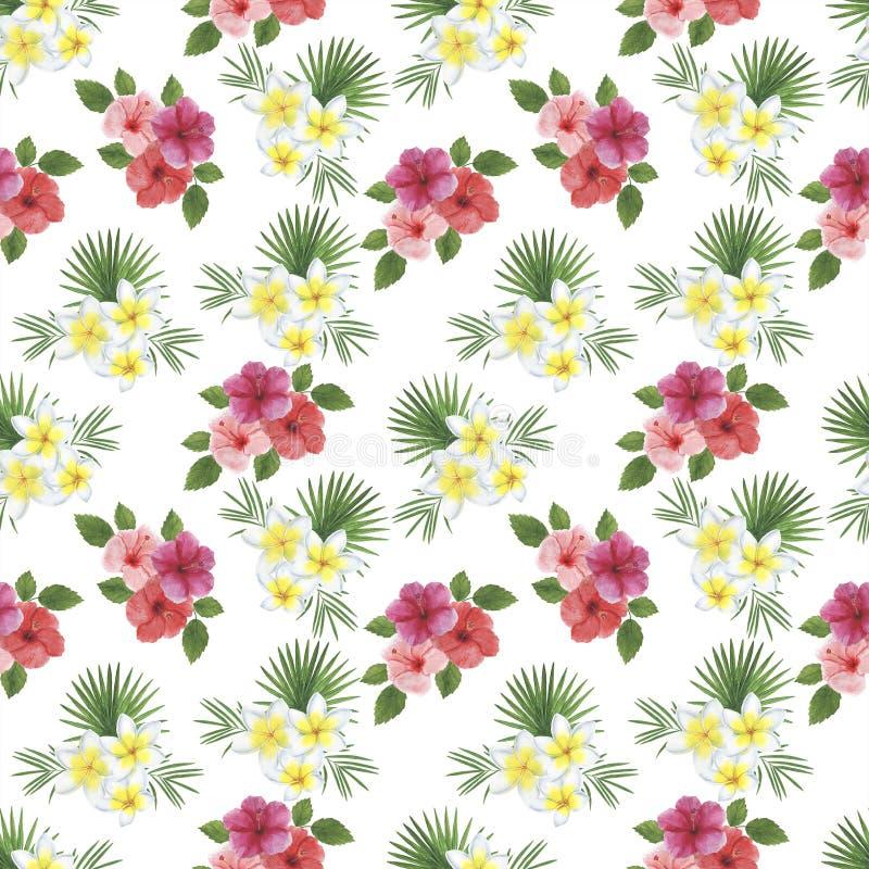 Kopieren Sie Digital-Papiertropen-Blumen-Blätter Monstera-Palmen-Hibiscus Plumeria-Aquarellillustrationen botanischen Dekorations stock abbildung