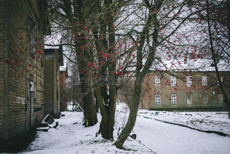 Kopli, Ταλίν, Εσθονία στοκ εικόνες με δικαίωμα ελεύθερης χρήσης