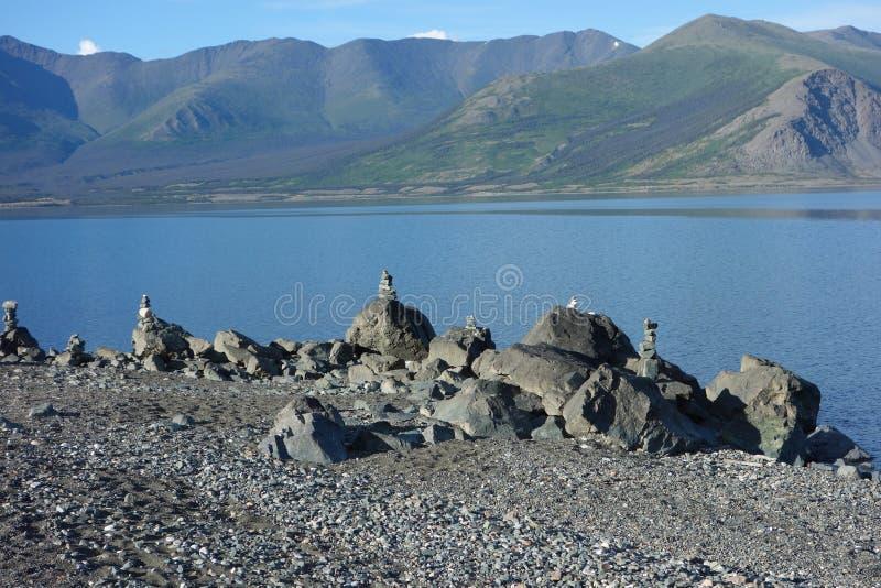 Kopowie przy ładnym Yukon jeziorem fotografia stock