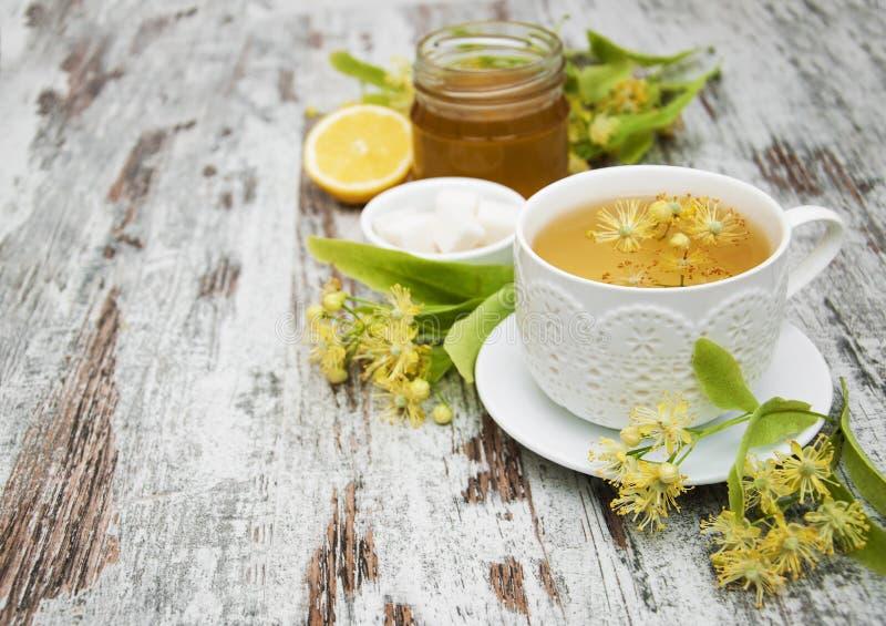 Kopp av örtte med lindblommor royaltyfri foto