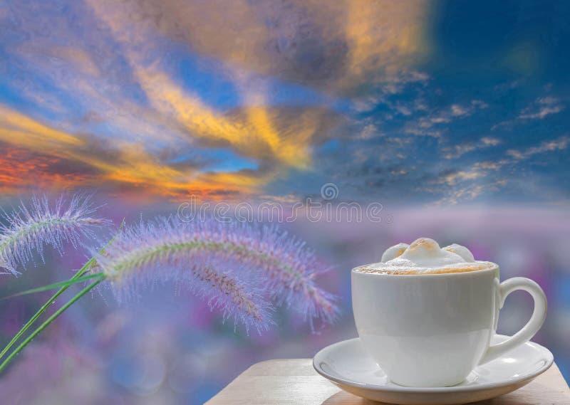 Kopp av lattekaffe med mjukt suddigt den deshogräs, Mauritius Grass, poaceaen, blomman med dagg och dimma, med härlig himmel royaltyfri fotografi