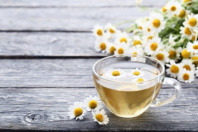 Kopp av tea med chamomileblommor royaltyfria bilder