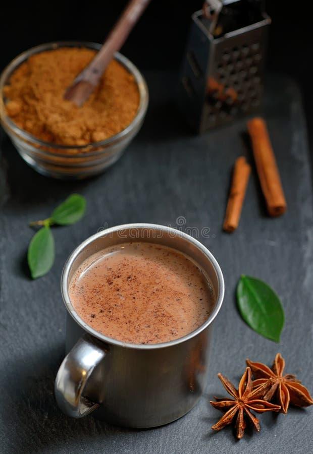 Kopp av varm choklad, kanelbruna pinnar royaltyfri foto