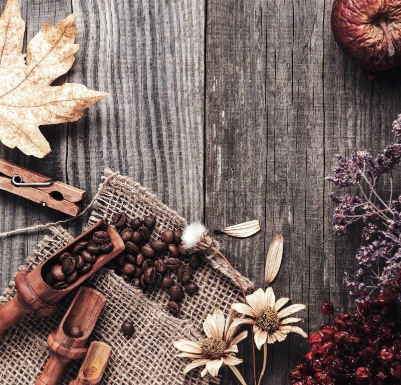 Kopp av varm espresso bland höstväxter på trätappningtabellen, kaffe på den gamla brädegrungen inklusive torkade växter royaltyfri fotografi
