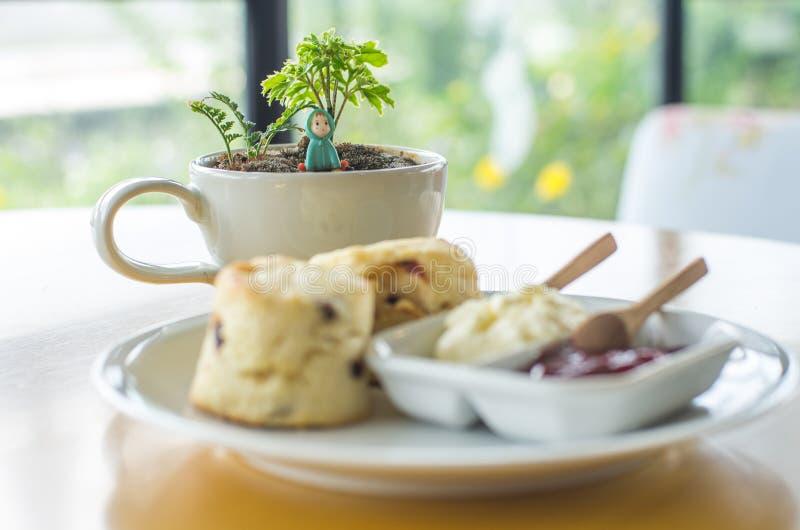 Kopp för vitt kaffe för ` med det lilla trädet och den lilla dockan royaltyfri bild
