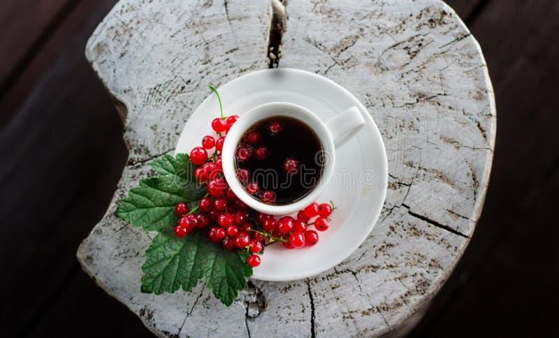 Kopp för vitt kaffe med te, som på ett tefat lägger de saftiga bären av den röda vinbäret på ett grönt blad royaltyfri fotografi