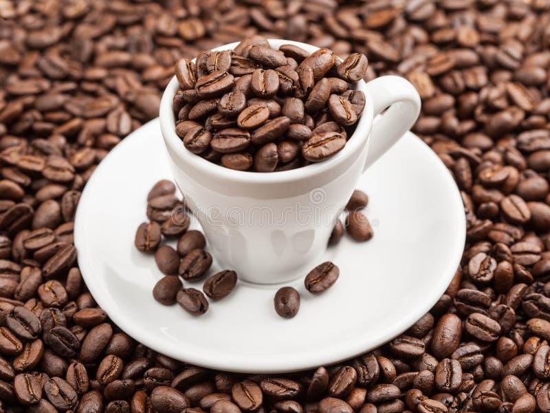 Kopp i grillade kaffebönor arkivfoton