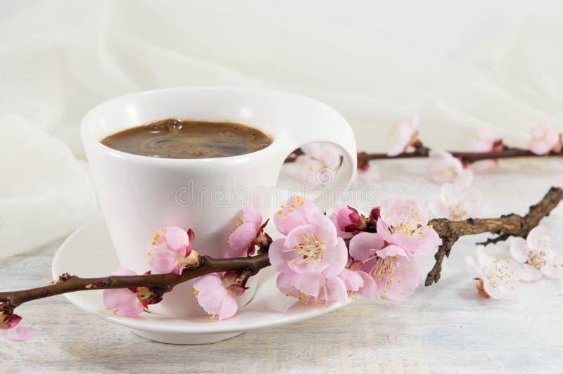 Kopp kaffe med blommor för körsbärsröd blomning fotografering för bildbyråer