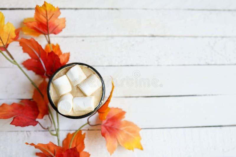 Kopp kaffe på vit träbakgrund med sidor för en höst, kopieringsutrymme royaltyfri bild