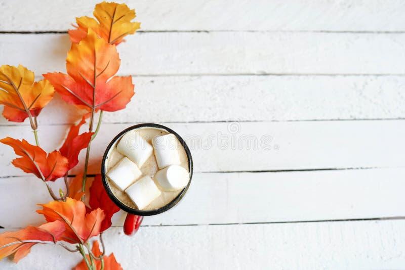 Kopp kaffe på vita åldriga träbräden med sidor för en höst, kopieringsutrymme royaltyfri fotografi