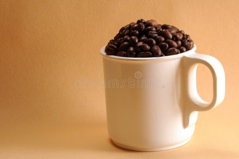 Kopp kaffebönor royaltyfria bilder