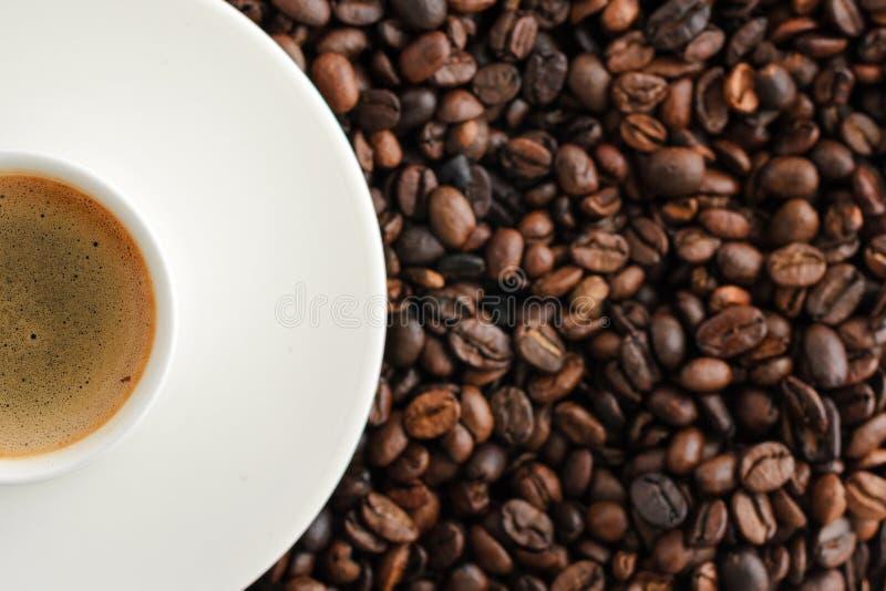 kopp kaffeespresso på backgroun för kaffebönor close upp fotografering för bildbyråer