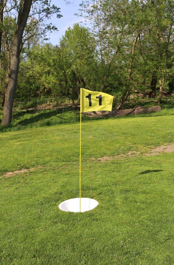 Kopp och flagga för fotgolfbanaboll royaltyfri bild