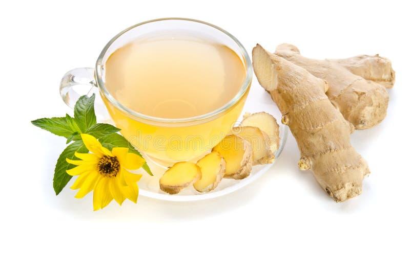 Kopp te med ingefäraskivor och Echinaceablomman royaltyfria foton