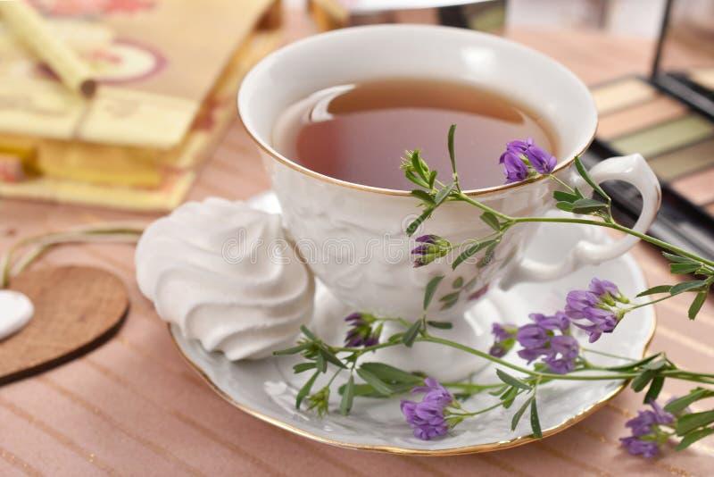 Kopp te- och marängkaka royaltyfria bilder