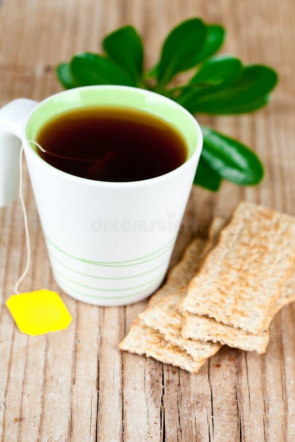 Kopp te- och sädesslagsmällare arkivfoton