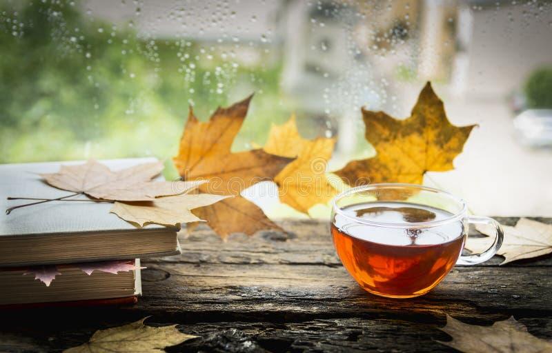 Kopp te på en träregnfönsterfönsterbräda med böcker och höstsidor på en naturlig bakgrund royaltyfri foto