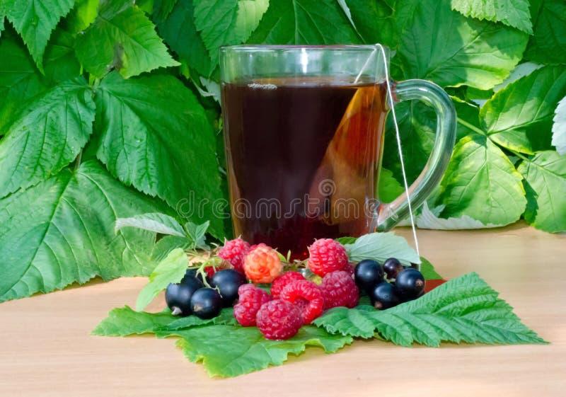 Kopp te på en trätabell bredvid hallonen och sidorna och bär av den svarta vinbäret är på arket royaltyfri fotografi