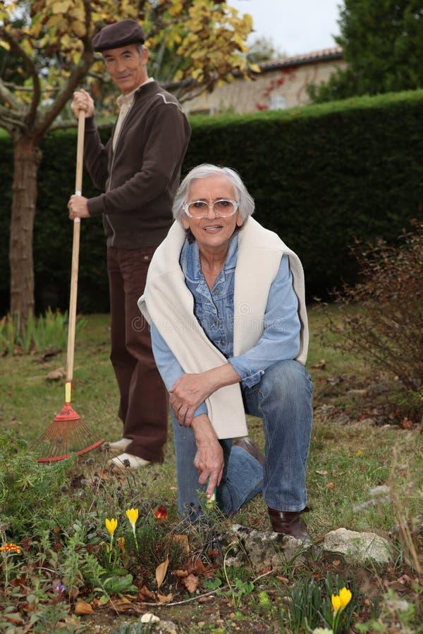 Koppelen de bejaarden het tuinieren stock fotografie