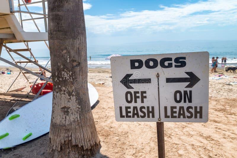 Koppeltecken för hundkapplöpning av och på på stranden arkivbild