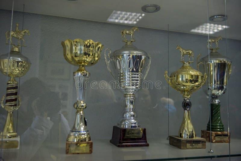 Koppen met prijzen door paarden worden gewonnen dat, stock afbeelding