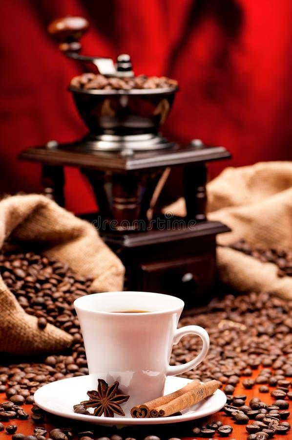 Koppkaffe med molar arkivbild