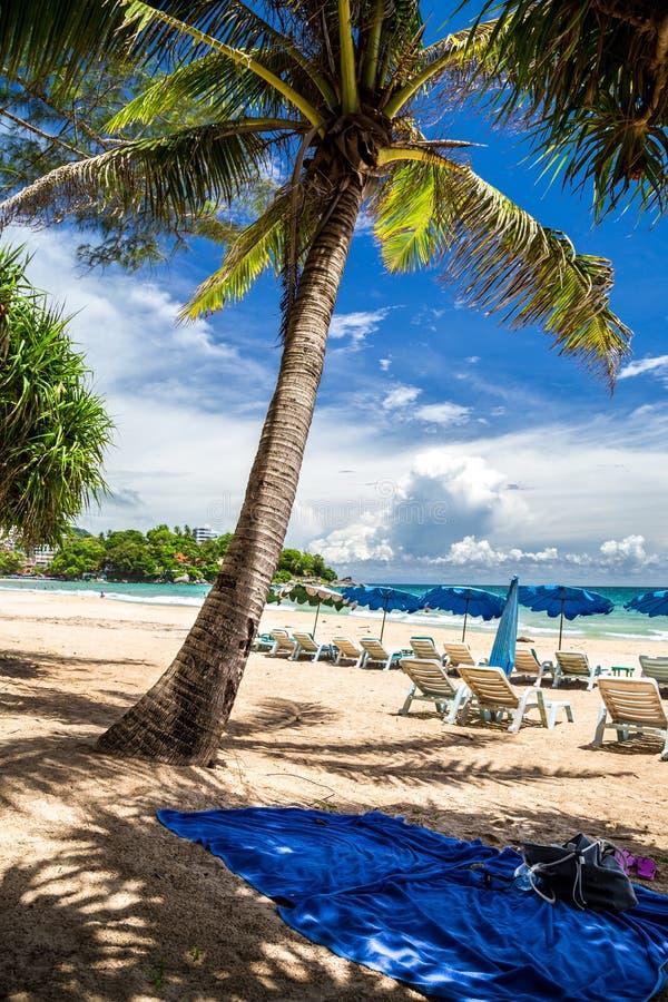 Koppla av i skuggan under en palmträd på Kata Beach, Thailand fotografering för bildbyråer