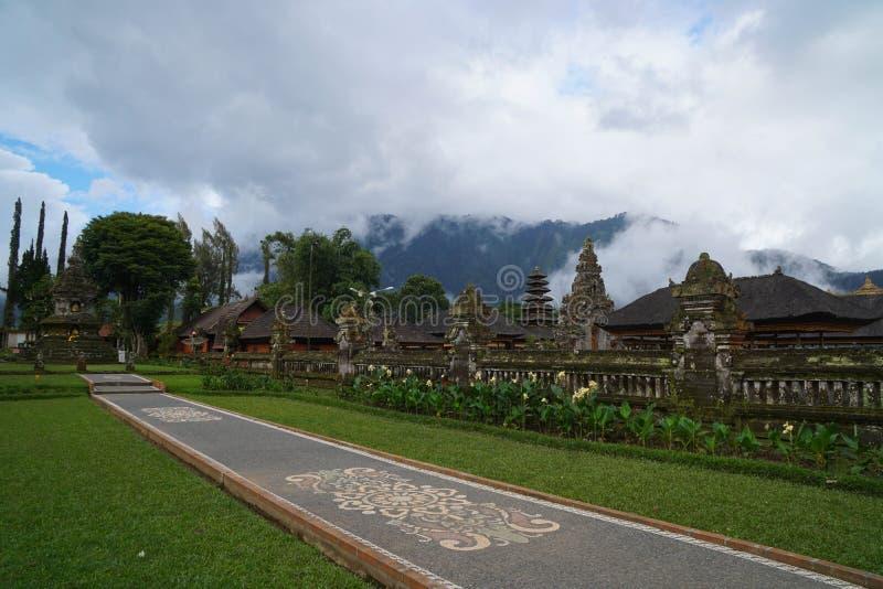 Koppla av med en kokosnöt i Bali royaltyfri foto