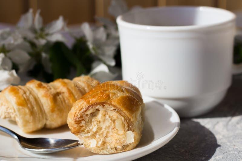 Koppla av tid och lycka med kopp te med bland den nya vårblomman royaltyfri foto