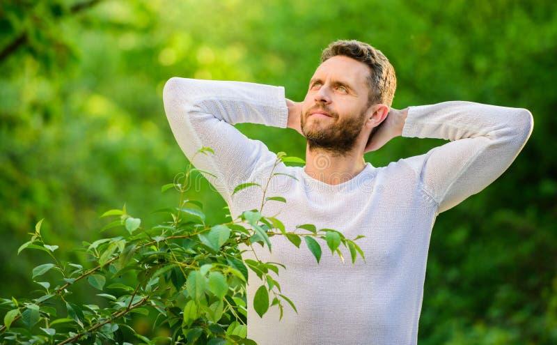 koppla av tid till mannen kopplar av i skogavkoppling ekologiskt liv f?r man man i gr?n skogmorgon i natur Sunt fotografering för bildbyråer