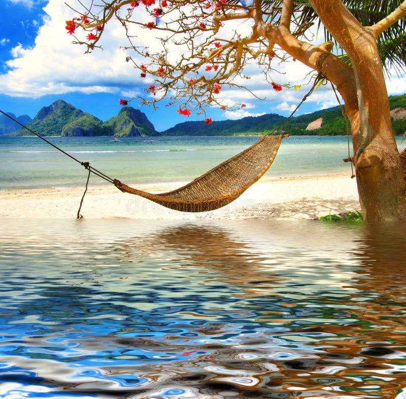 koppla av tropiskt royaltyfria foton