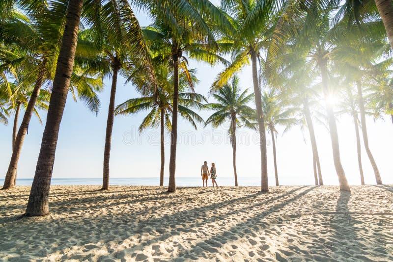 Koppla ihop anseendet på den sandiga stranden bland palmträd på solig morgon royaltyfri bild