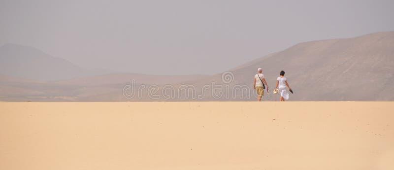 Koppla ihop att gå på berömda sanddyn av Fuerteventura royaltyfria foton