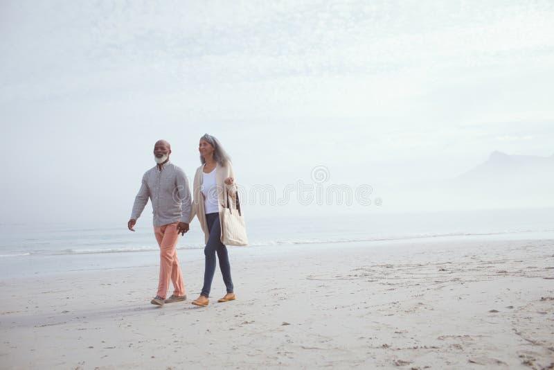 Koppla ihop att rymma händer, medan gå vid stranden royaltyfri foto