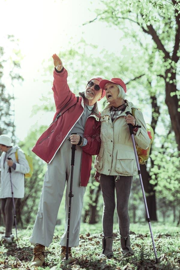 Koppla ihop av pensionärer som ser naturliga dragningar, medan fotvandra royaltyfri foto
