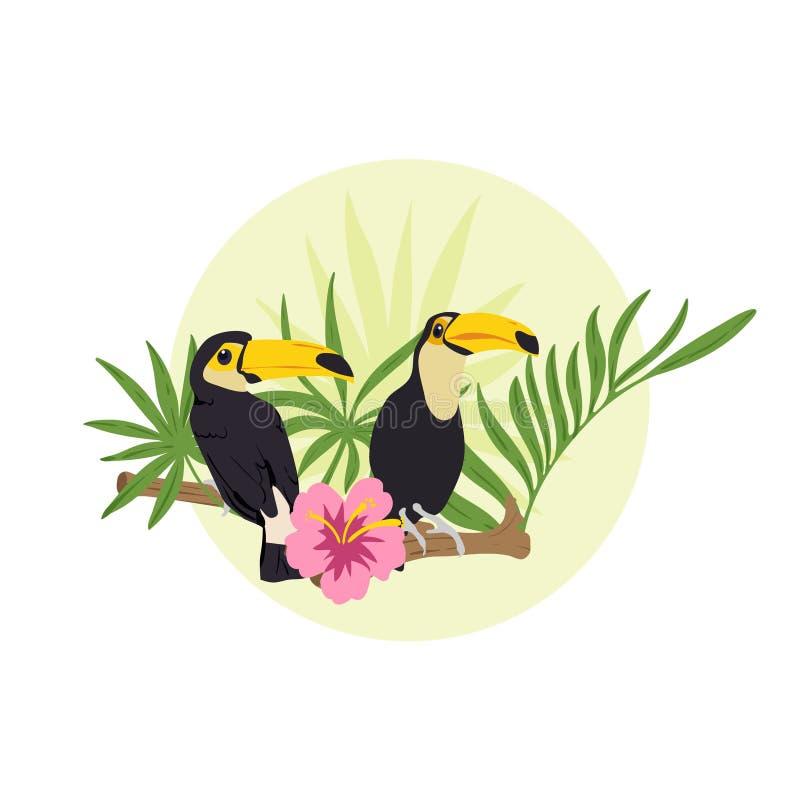 Koppla ihop av tukan som sitter på filialen med blomman i djungeln vektor illustrationer