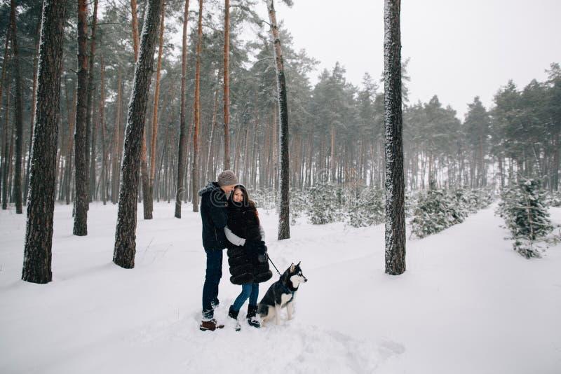 Koppla ihop förälskat gå med skrovligt i vinterskog royaltyfri fotografi