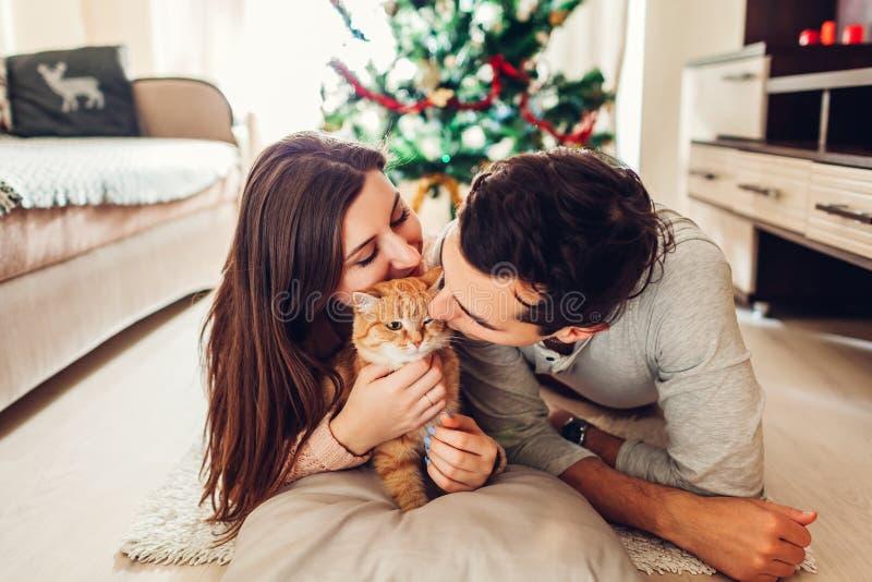 Koppla ihop förälskat ligga vid julgranen och att spela med katten hemma man den avslappnande kvinnan royaltyfri foto