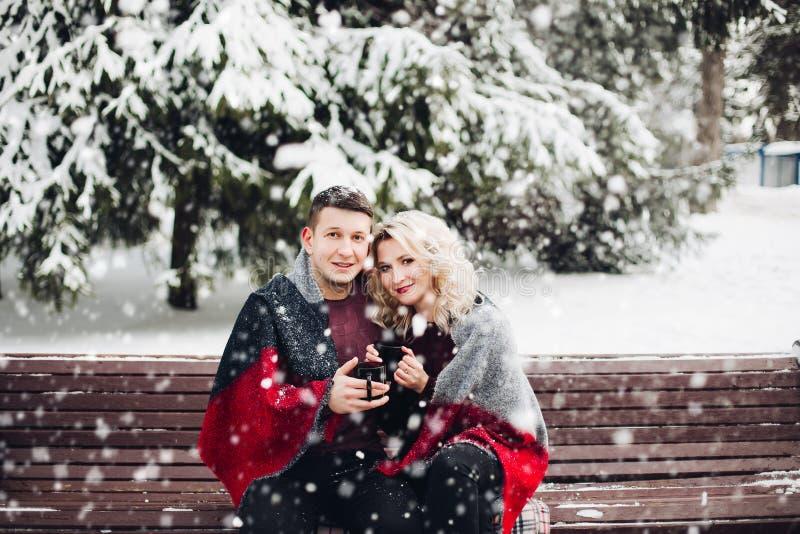 Koppla ihop förälskat sammanträde på bänk och att le, i att snöa skogen arkivbild