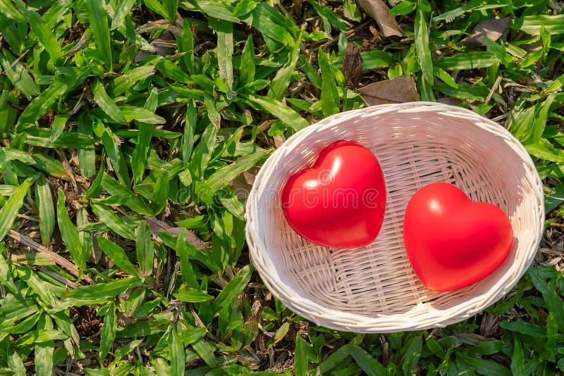 Koppla ihop röd hjärtaform på grön naturlig bakgrund i den utomhus- trädgården Försäkring och välgörenhet för förälskelseValentin arkivfoto